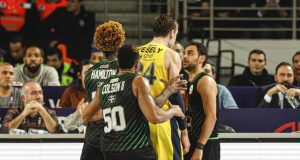 jan-vesely-jhonny-hamilton